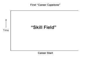 """The """"Skill Field"""""""