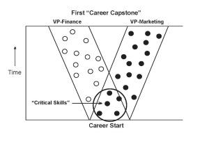 "The ""Critical Skills"""
